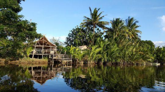 Top5 des lieux à découvrir absolument lors d'un voyage en Malaisie