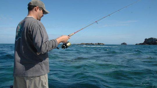 Comment choisir une canne à pêche