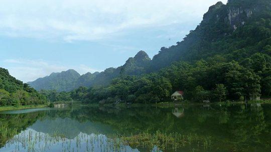 Vacances au Vietnam : découvrir le parc national de Cuc Phuong